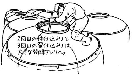 2回目の「仲仕込み」と3回目の「留仕込み」は大きな発酵タンクへ。