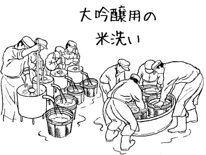 大吟醸用の米洗い(精米歩合40~45%)ステンレスのザルに入れて浸漬する