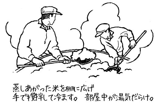 蒸し上がった米を棚に広げ手で攪拌して冷ます。部屋中が湯気だらけ